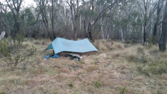 Guide's tent